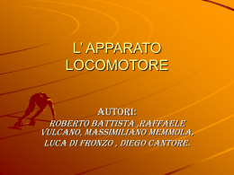 Apparatolocomotore - Liceo Scientifico Salvemini