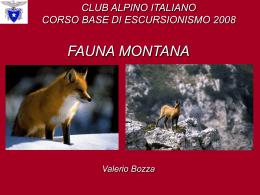 Fauna montana – Corso base di escursionismo 2008 - AE-CMI