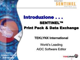 Presentazione SENTINEL - Tek-IT