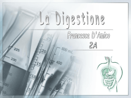 """La digestione - Scuola Secondaria di I grado """"A. Balzico"""""""