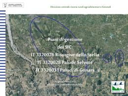 Scarica interventi dei relatori - Regione Autonoma Friuli Venezia