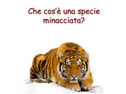 Specie minacciate d`estinzione
