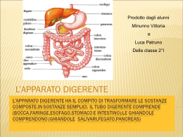 Diapositiva 1 - Istitutodellaquila.it