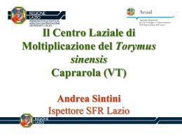 Il Centro Laziale di Moltiplicazione del Torymus sinensis Caprarola