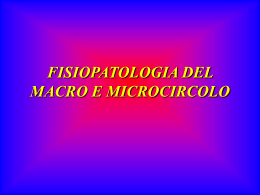 IL MICROCIRCOLO
