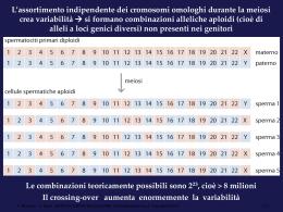 mappatura_genetica - Università degli Studi di Roma Tor Vergata