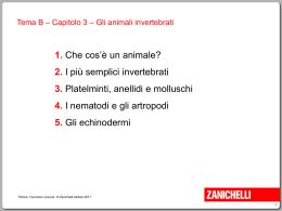 animali-invertebrati
