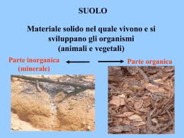 suolo-fauna aerobionte
