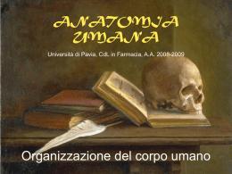 Lezione 6 - Università degli Studi di Pavia