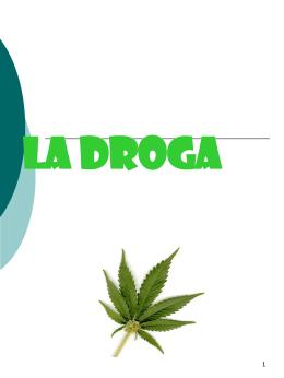 La droga - ic 3°castaldi rodari