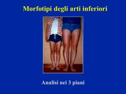 Morfotipi - lerat