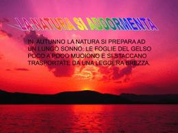 Luca e Mattia - Sito Istituto Comprensivo di Avigliana TO