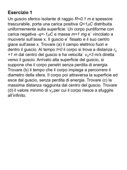 Prova scritta di Fisica Generale 2 25 giugno 2007
