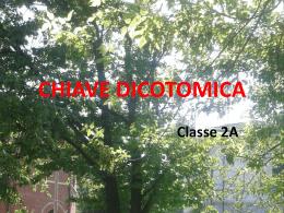 Presentazione Chiave dicotomica 2 A