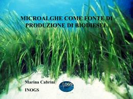 Microalgae come fonte di produzione di Biodiesel