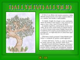 724 FLASHLIGHTS Maglietta A MAGLIA TG 36//38 MAGLIONE ABBOTTONATURA NUOVO