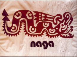 NAGA (Olivani) - Medici con l`Africa