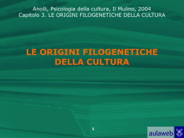 filogensi cultura