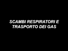 n° 7 - scambi respiratori (vnd.ms-powerpoint, it, 1577 KB, 12/19/02)