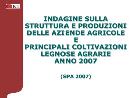 Presentazione indagine 2007