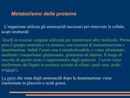 TRATTAMENTO DIETETICO NELLE PATOLOGIE RENALI