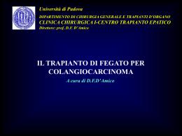 Slides - triveneta.org