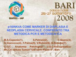 143 - M.A.Caponio, S.Petroni, et al.