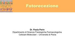 Lezione 2 - Università degli Studi di Pavia