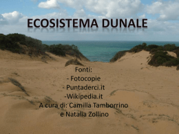 Ecosistema dunale