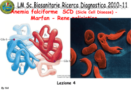 04 LM SBIS RIC_DIAGN 10_11 Falcemia