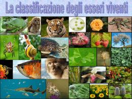classificazione esseri viventi - Istituto Comprensivo Manziana