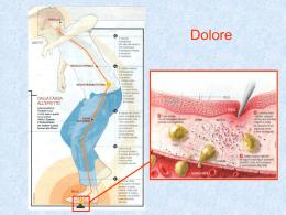 Terapia del Dolore - Area-c54