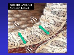 Gli indipendenti di sinistral portal hipertensión