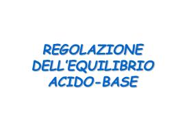 LA REGOLAZIONE DELL`EQUILIBRIO ACIDO-BASE