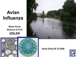 La letalità media del virus dell`influenza aviaria H5N1 (OMS)