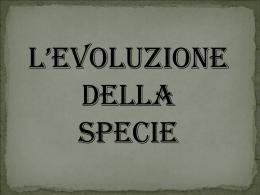 L`evoluzione della specie