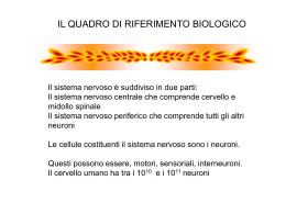 Cervello-PsiCo-2011