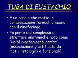 Tuba di Eustachio