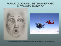 Sistema Simpatico (vnd.ms-powerpoint, it, 4290 KB, 4/23/07)