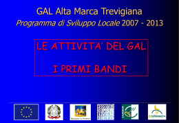 Presentazione GAL PROVINCIA