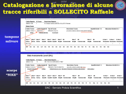 Diapositiva 1 - Perugia Murder File