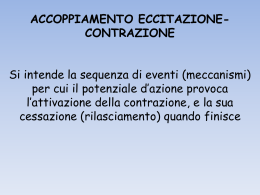 LEZIONE CEVESE 3 (vnd.ms-powerpoint, it, 1892 KB, 10/8/15)