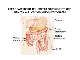 esofago, stomaco, colon, pancreas