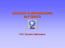 Crescita Metabolismo Coltivazione Batteri