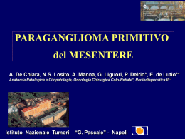 A case of a solitary primary mesenteric paraganglioma