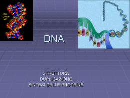 DNA - Liceo Foscarini