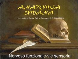 Lezione 24 - Università degli Studi di Pavia