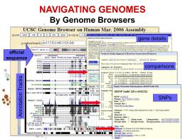 Bioinformatica_BTS_5