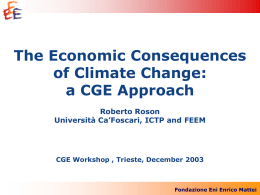 The Economic Consequences of Climate Change: a CGE