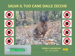 salva il tuo cane dalle zecche